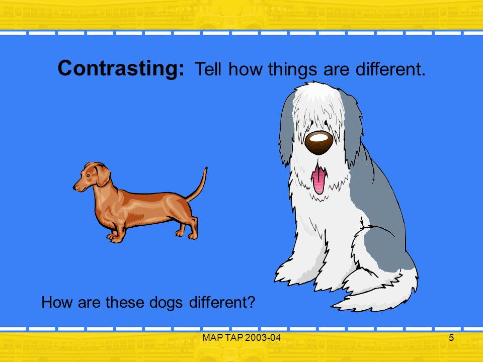 MAP TAP 2003-045 Contrasting: Tell how things are different. How are these dogs different?