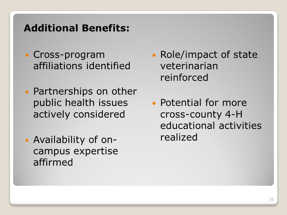 Additional Benefits: Cross-program affiliations identified Partnerships on other public health issues actively considered Availability of on- campus expertise affirmed Role/impact of state veterinarian reinforced Potential for more cross-county 4-H educational activities realized 18