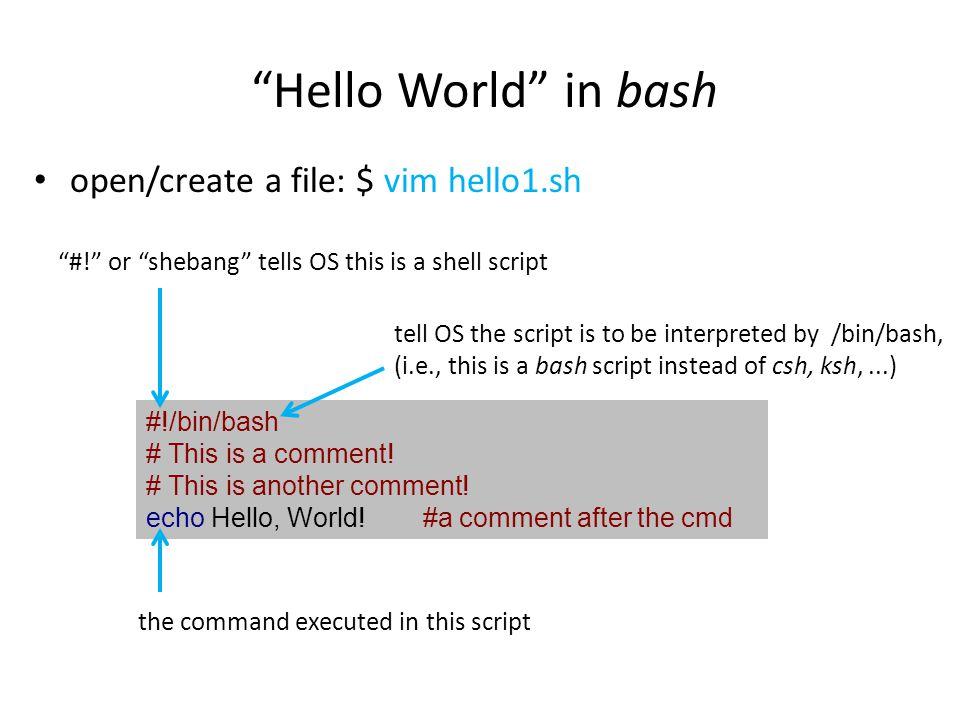 Hello World in bash open/create a file: $ vim hello1.sh add execution permission: $ chmod 744./hello1.sh run the script: $./hello1.sh #!/bin/bash # This is a comment.