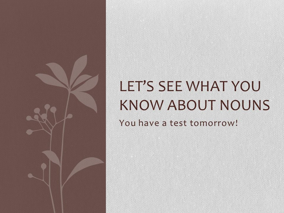 You have a test tomorrow! LET'S SEE WHAT YOU KNOW ABOUT NOUNS