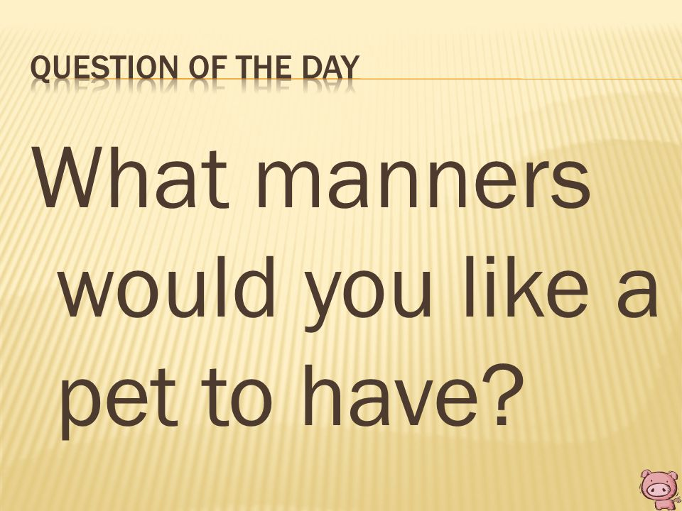 What manners would you like a pet to have?