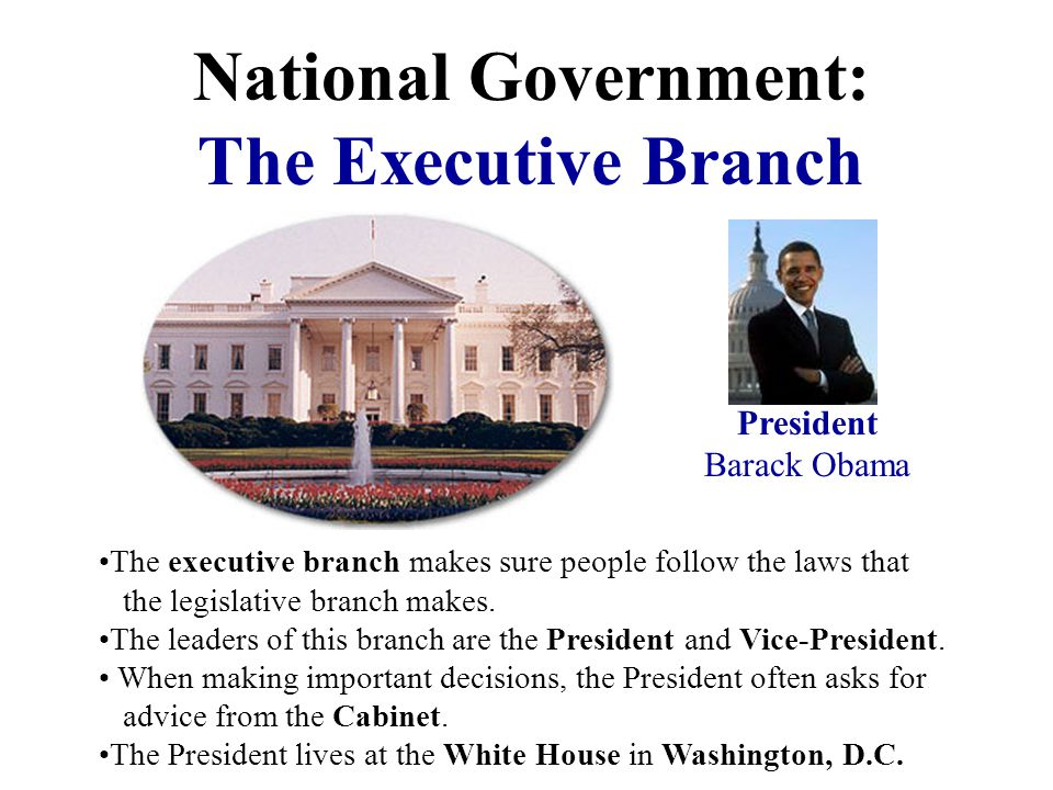 National Federal Let's look more closely at each branch of the National or Federal government.