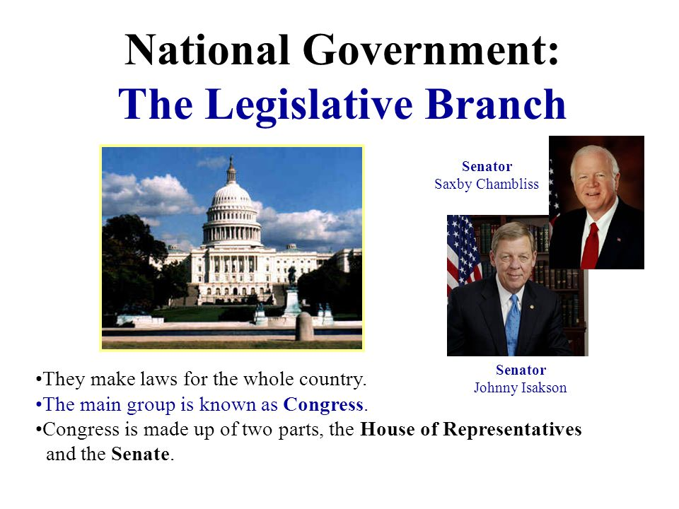National Government: The Executive Branch The executive branch makes sure people follow the laws that the legislative branch makes. The leaders of thi