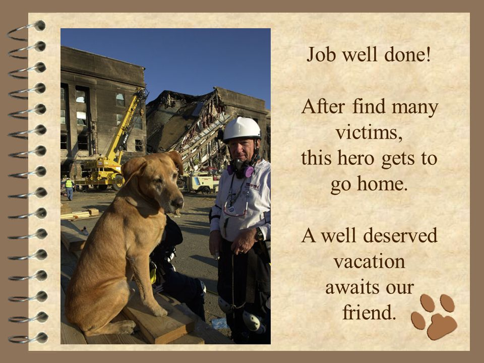 Job well done. After find many victims, this hero gets to go home.