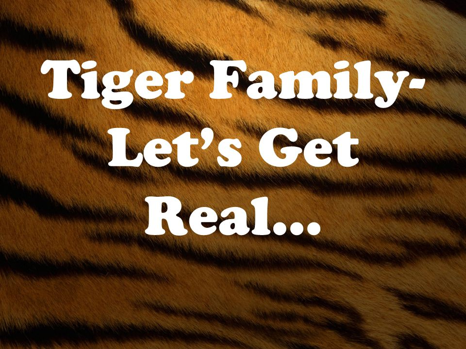 Tiger Family- Let's Get Real…