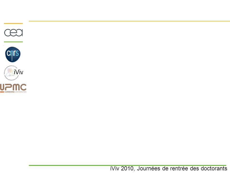 iViv 2010, Journées de rentrée des doctorants