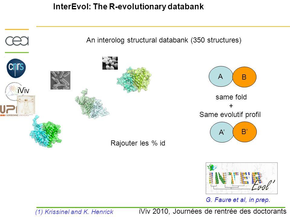 iViv 2010, Journées de rentrée des doctorants InterEvol: The R-evolutionary databank G. Faure et al, in prep. (1) Krissinel and K. Henrick An interolo