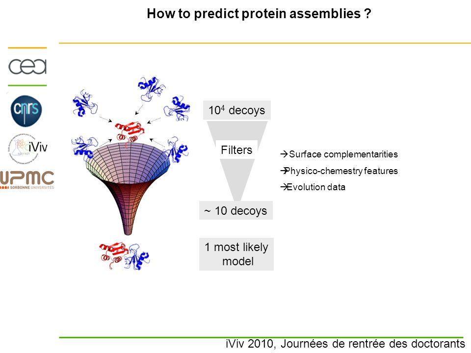 iViv 2010, Journées de rentrée des doctorants How to predict protein assemblies ? 10 4 decoys 1 most likely model Filters ~ 10 decoys  Surface comple