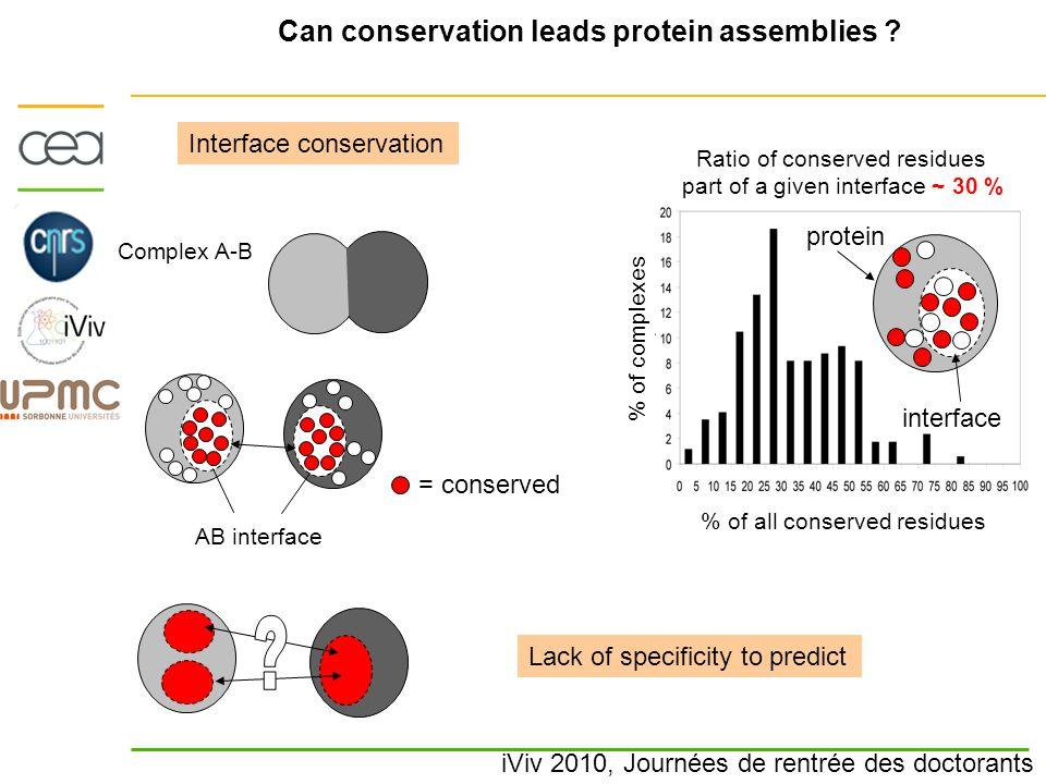 iViv 2010, Journées de rentrée des doctorants Can conservation leads protein assemblies ? = conserved AB interface Interface conservation Complex A-B