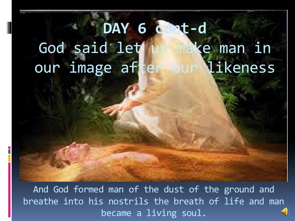 Day 6 And God said let the earth bring forth, cattle, creeping thing in which there is life, and the beast of the field.