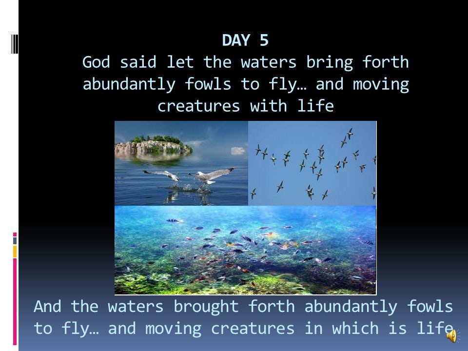 DAY 4 God said let there be Lights in the firmament of Heaven to give light in firmament and to give light upon the earth.