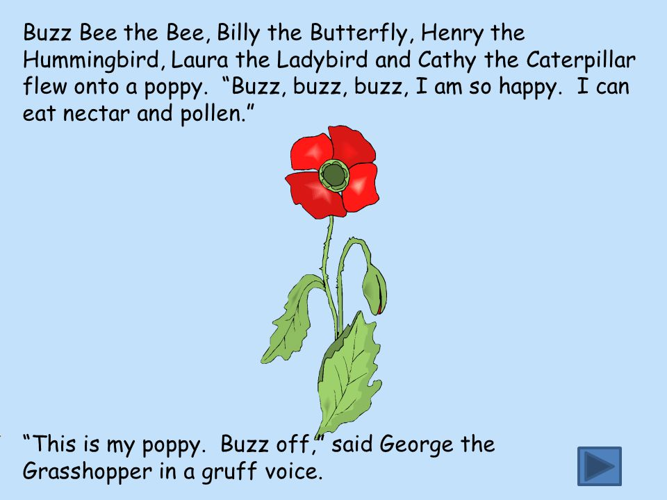"""Buzz Bee the Bee, Billy the Butterfly, Henry the Hummingbird, Laura the Ladybird and Cathy the Caterpillar flew onto a poppy. """"Buzz, buzz, buzz, I am"""