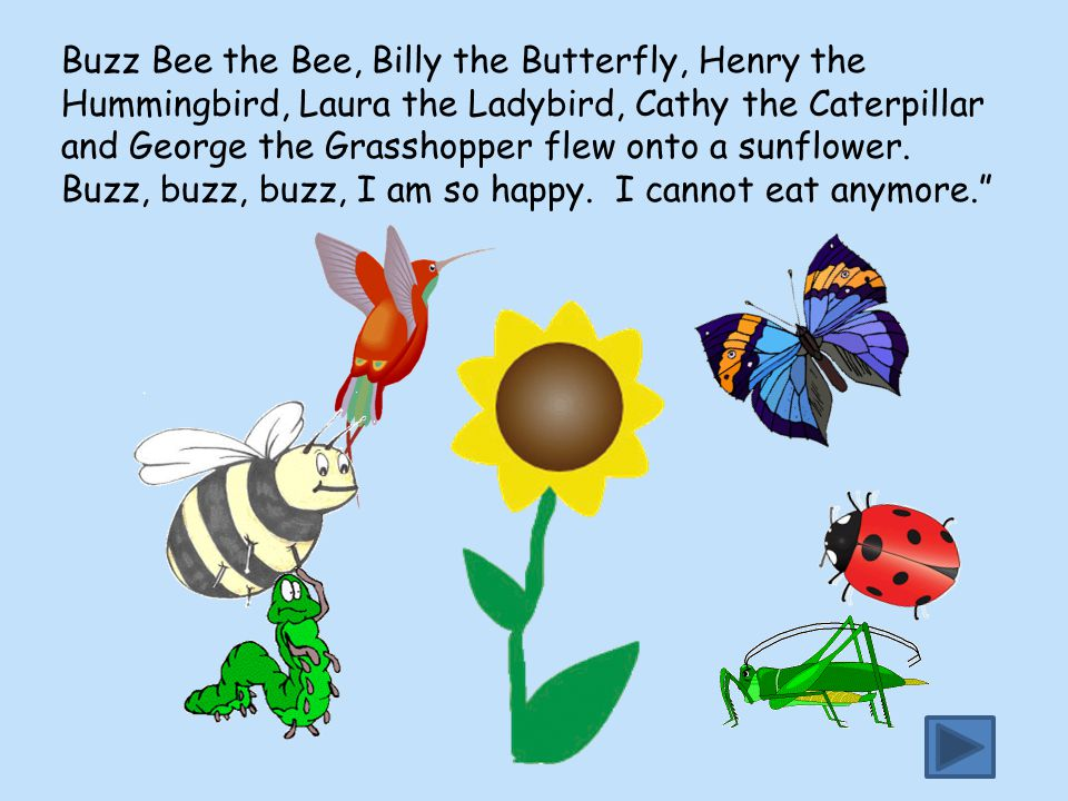Buzz Bee the Bee, Billy the Butterfly, Henry the Hummingbird, Laura the Ladybird, Cathy the Caterpillar and George the Grasshopper flew onto a sunflow