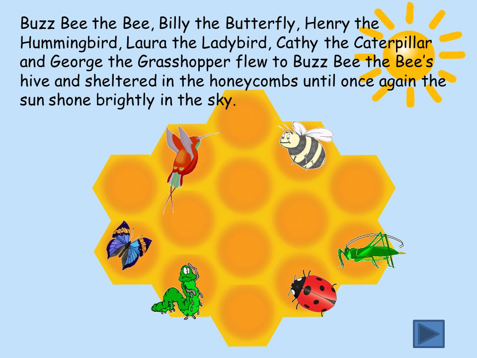 Buzz Bee the Bee, Billy the Butterfly, Henry the Hummingbird, Laura the Ladybird, Cathy the Caterpillar and George the Grasshopper flew to Buzz Bee th