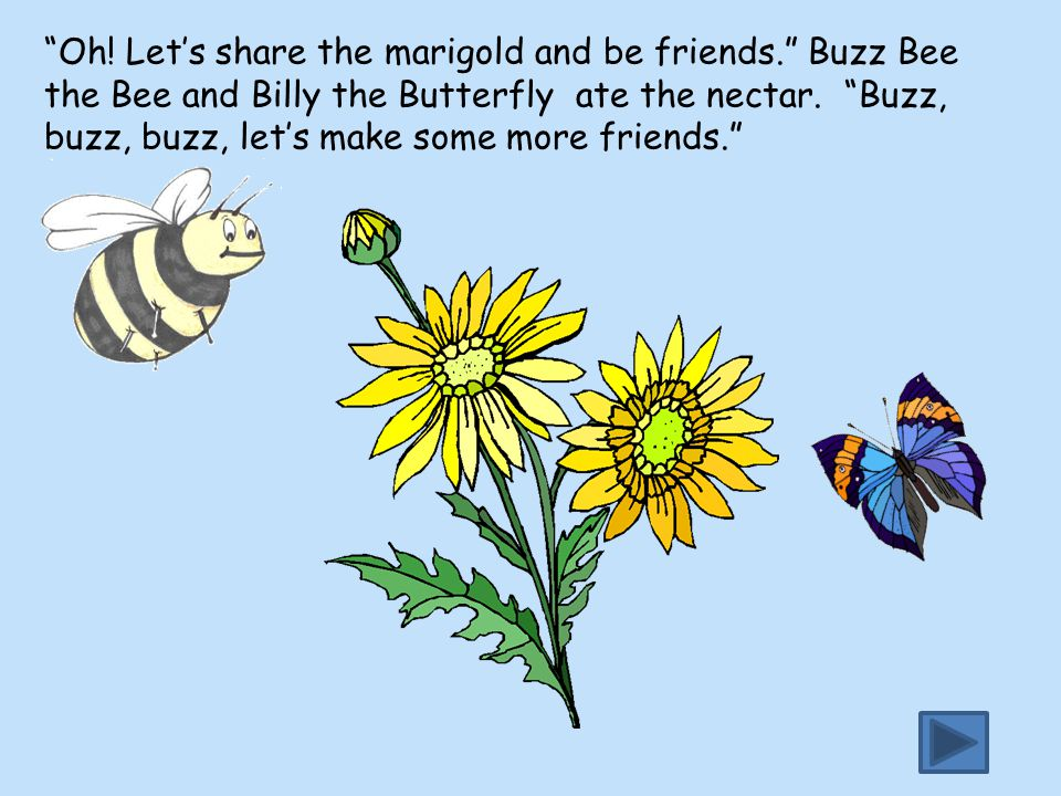 """""""Oh! Let's share the marigold and be friends."""" Buzz Bee the Bee and Billy the Butterfly ate the nectar. """"Buzz, buzz, buzz, let's make some more friend"""