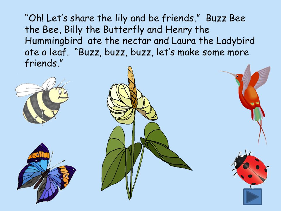 """""""Oh! Let's share the lily and be friends."""" Buzz Bee the Bee, Billy the Butterfly and Henry the Hummingbird ate the nectar and Laura the Ladybird ate a"""
