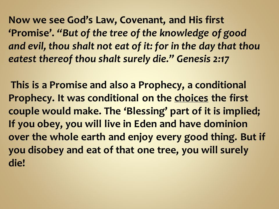 Now we see God's Law, Covenant, and His first 'Promise'.