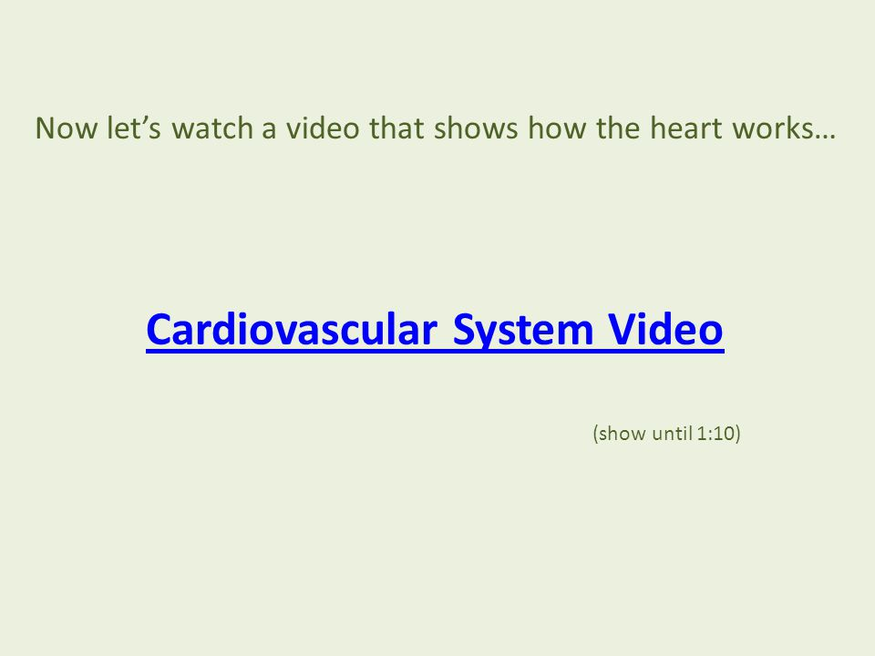 Now let's watch a video that shows how the heart works… Cardiovascular System Video (show until 1:10)