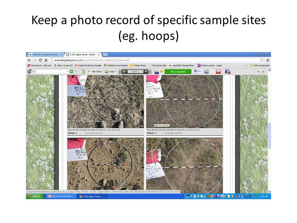 Keep a photo record of specific sample sites (eg. hoops)