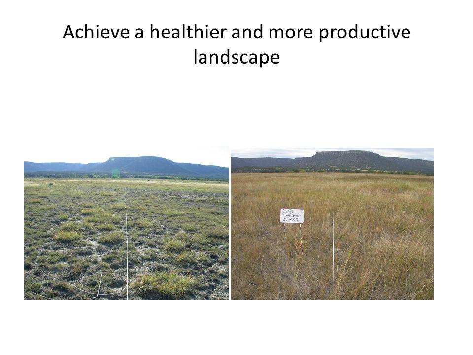 Achieve a healthier and more productive landscape