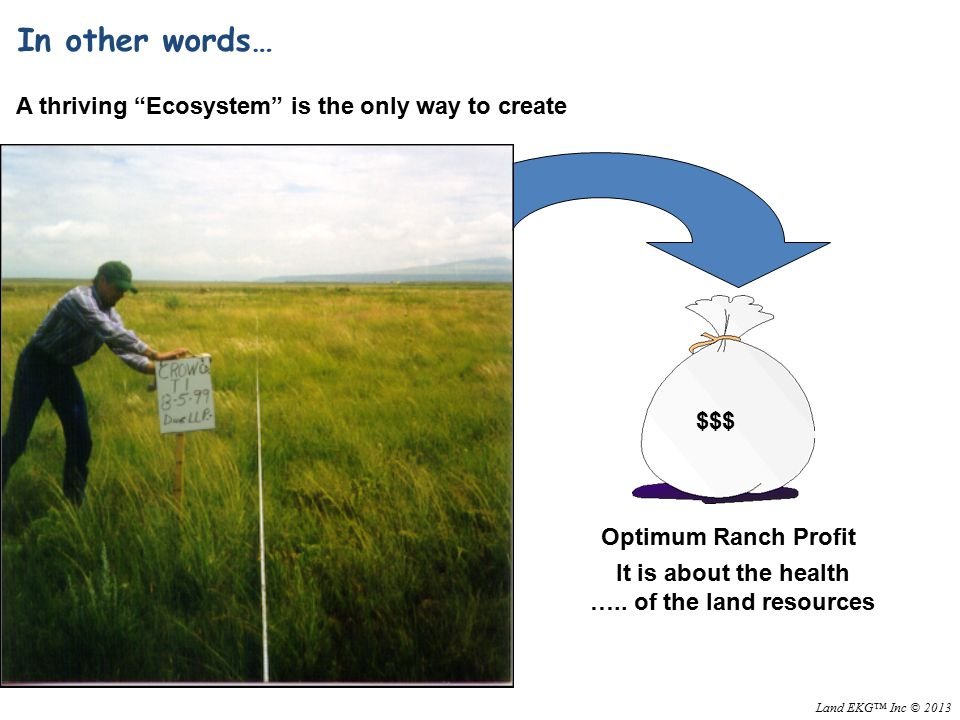 Optimum Ranch Profit $$$ A thriving Ecosystem is the only way to create In other words… It is about the health …..