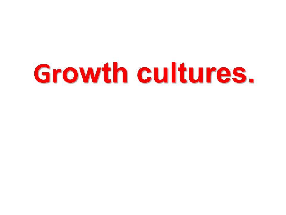 Growth cultures.