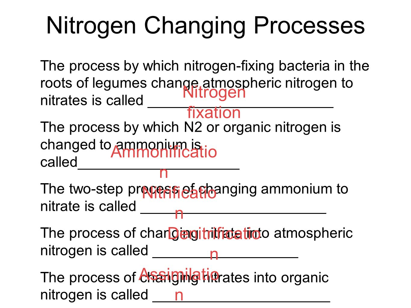 Nitrogen Changing Processes The process by which nitrogen-fixing bacteria in the roots of legumes change atmospheric nitrogen to nitrates is called __