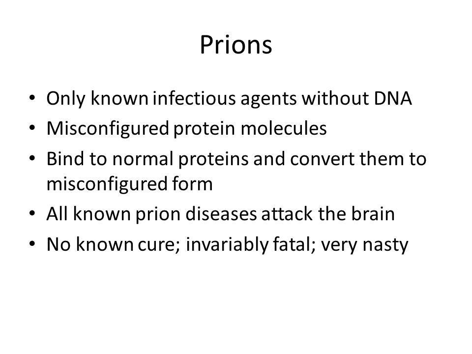 Prions Only known infectious agents without DNA Misconfigured protein molecules Bind to normal proteins and convert them to misconfigured form All known prion diseases attack the brain No known cure; invariably fatal; very nasty
