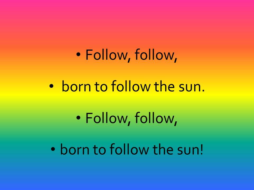 Follow, follow, born to follow the sun. Follow, follow, born to follow the sun!