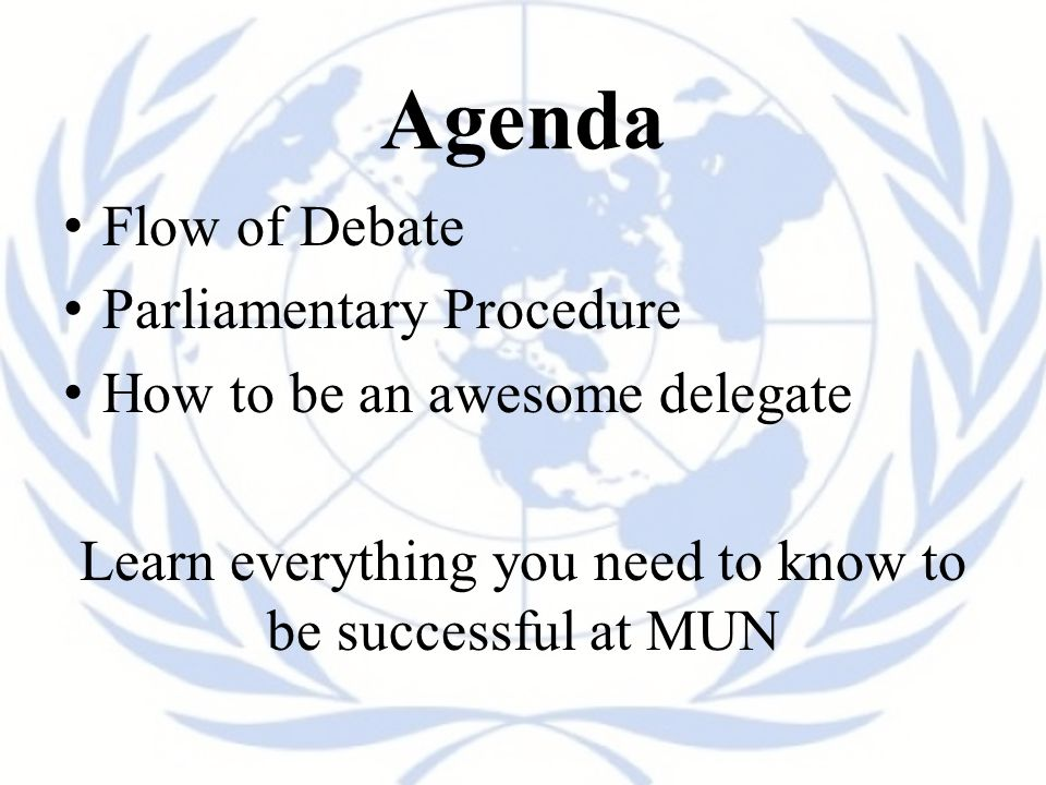 Agenda Flow of Debate Parliamentary Procedure How to be an awesome delegate Learn everything you need to know to be successful at MUN