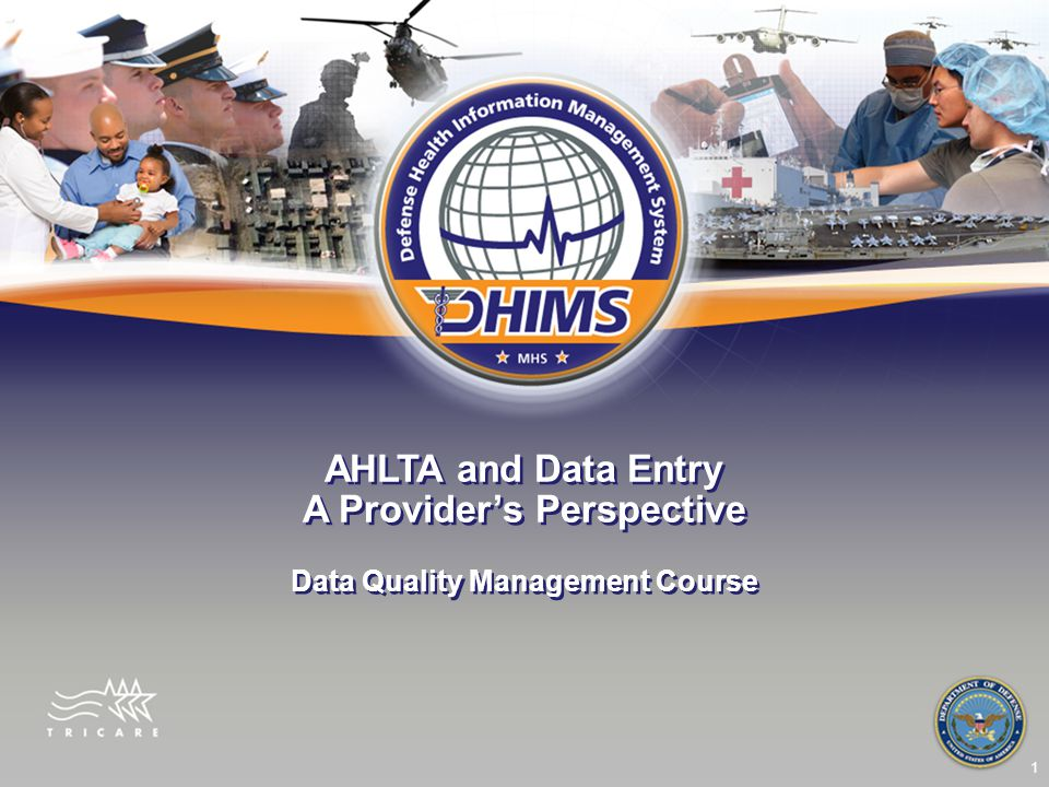 1 AHLTA and Data Entry A Provider's Perspective Data Quality Management Course