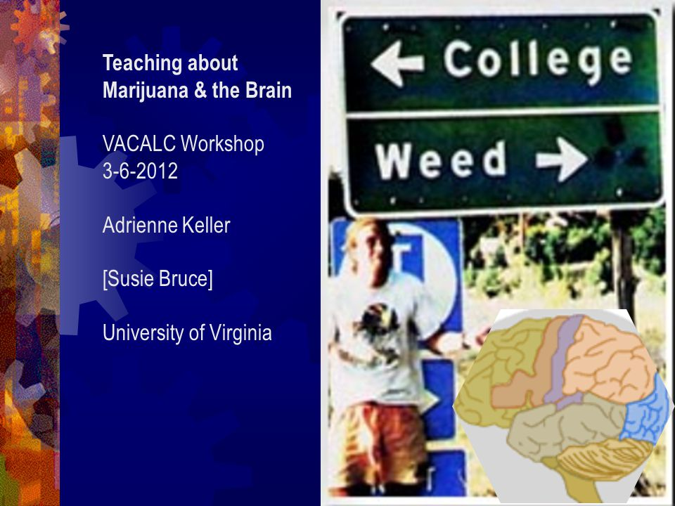 Teaching about Marijuana & the Brain VACALC Workshop 3-6-2012 Adrienne Keller [Susie Bruce] University of Virginia