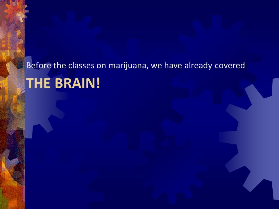 THC penetrates every cell in the body.