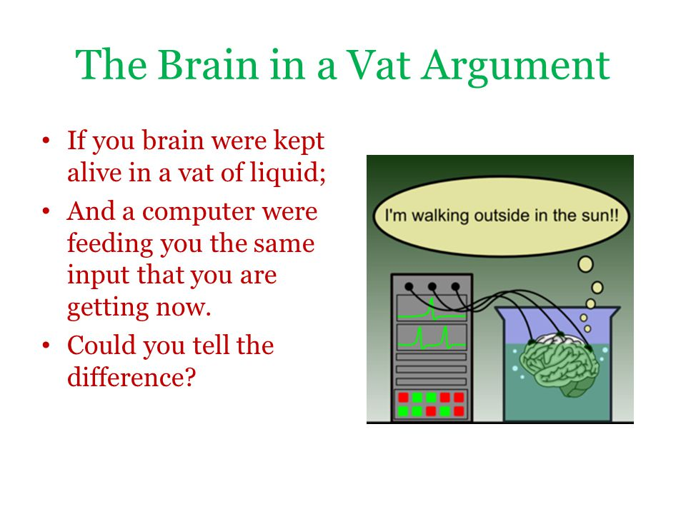 The Brain in a Vat Argument If you brain were kept alive in a vat of liquid; And a computer were feeding you the same input that you are getting now.