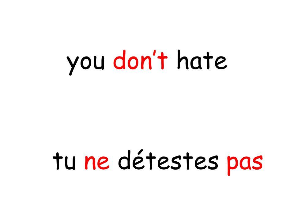 tu ne détestes pas you don't hate
