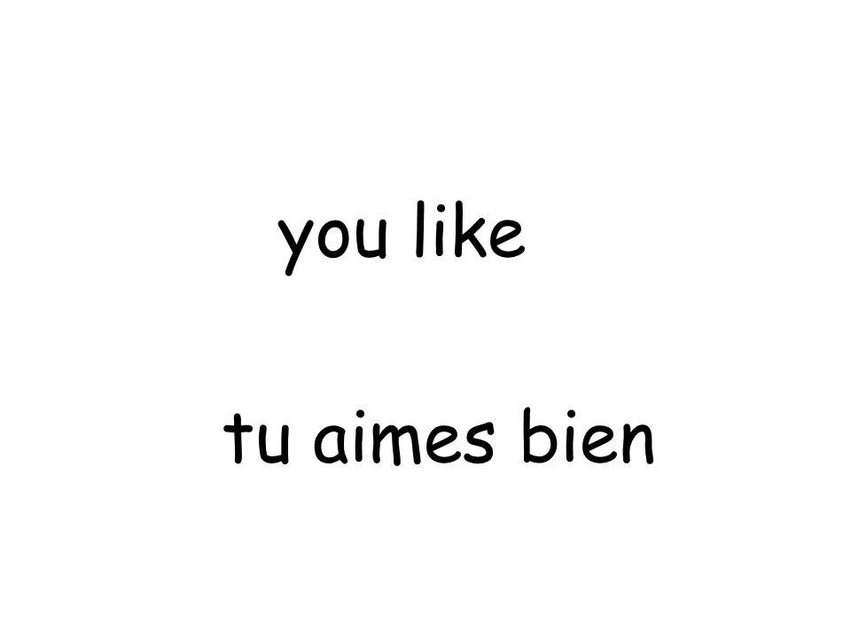 tu aimes bien you like