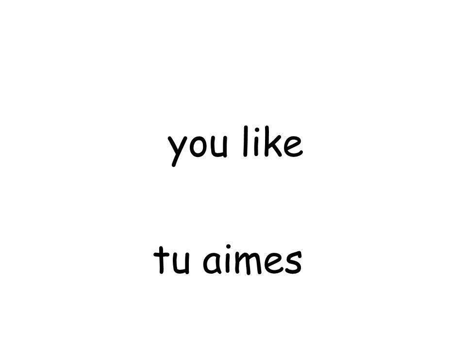 tu aimes you like