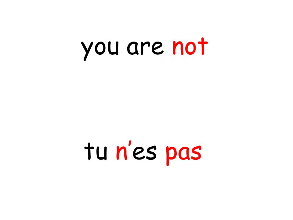 tu n'es pas you are not