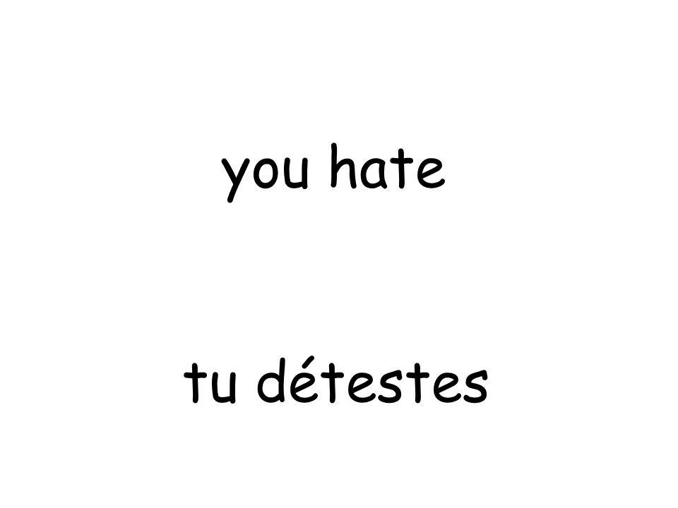 tu détestes you hate