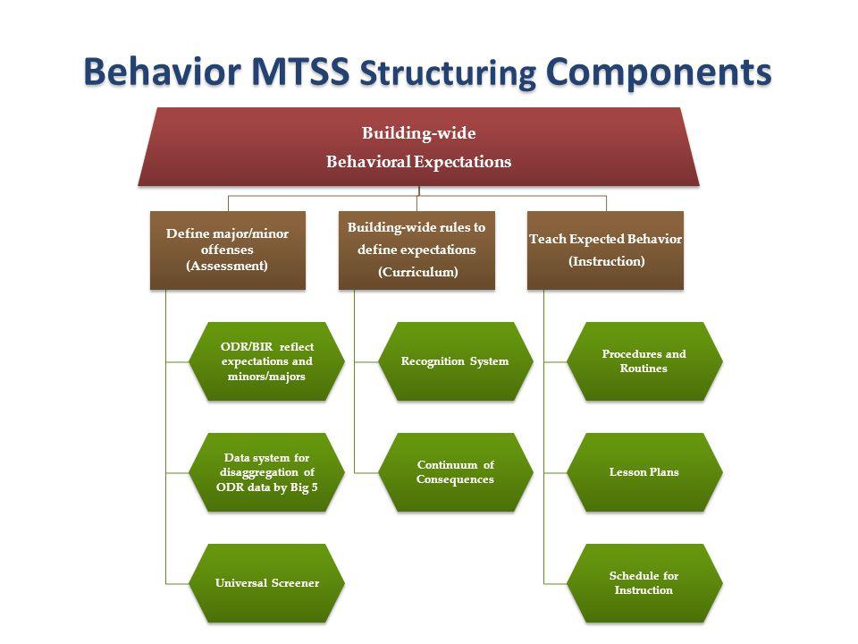 Behavior MTSS Structuring Components