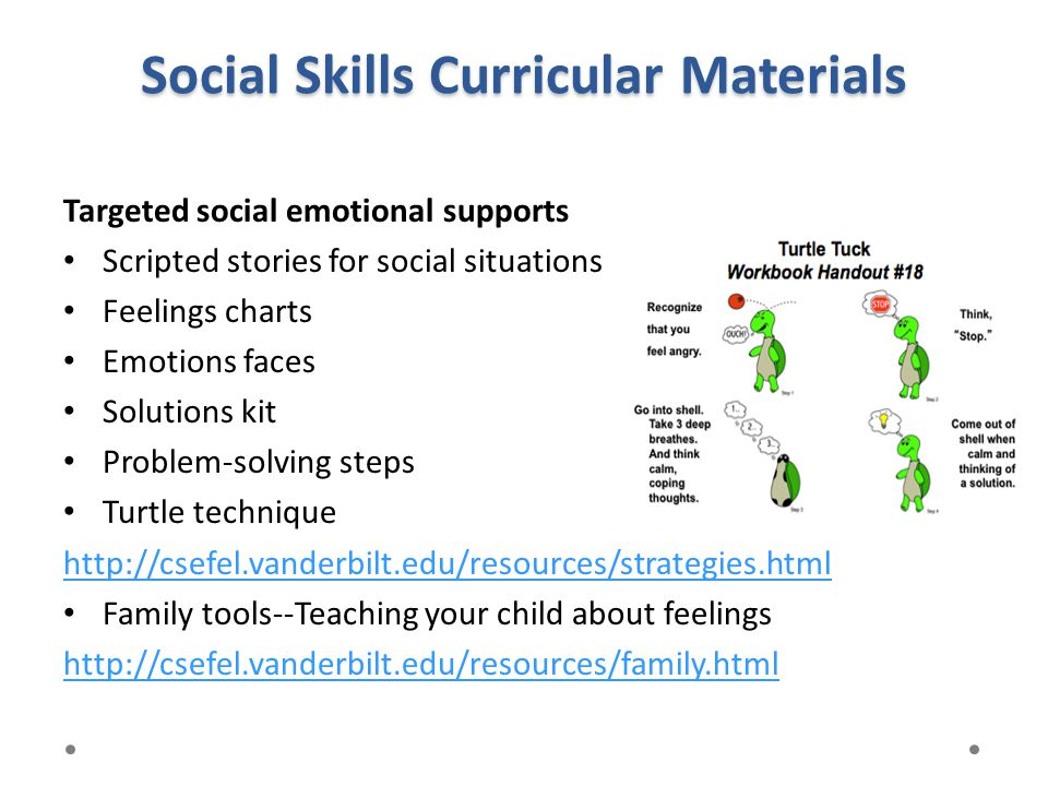 Social Skills Curricular Materials Targeted social emotional supports Scripted stories for social situations Feelings charts Emotions faces Solutions