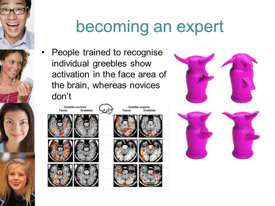 People trained to recognise individual greebles show activation in the face area of the brain, whereas novices don't