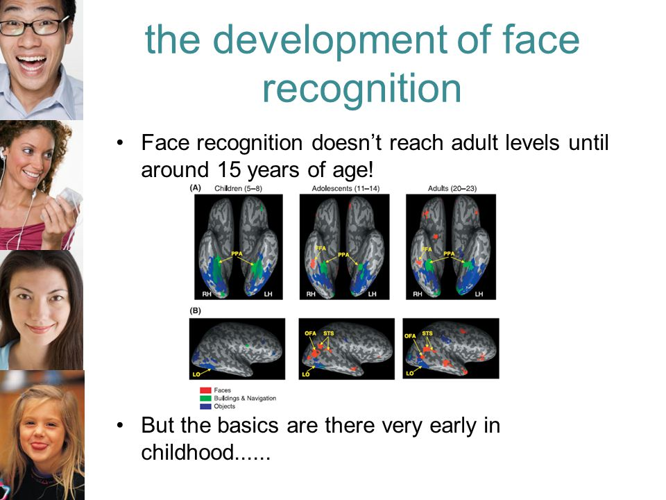 the development of face recognition Face recognition doesn't reach adult levels until around 15 years of age.