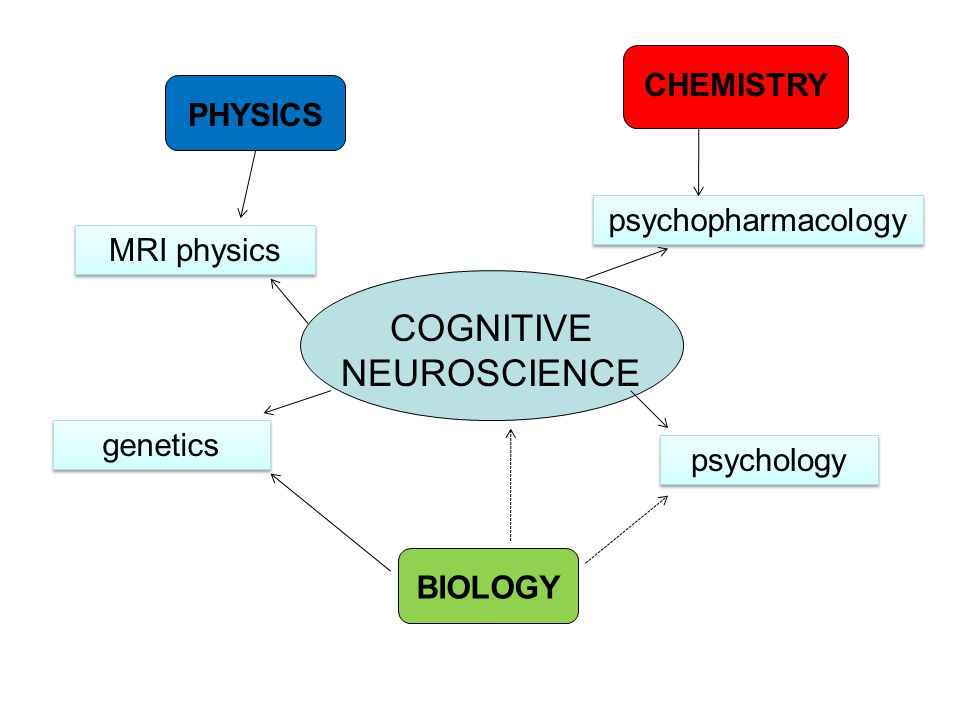 COGNITIVE NEUROSCIENCE psychology MRI physics genetics psychopharmacology BIOLOGY PHYSICS CHEMISTRY