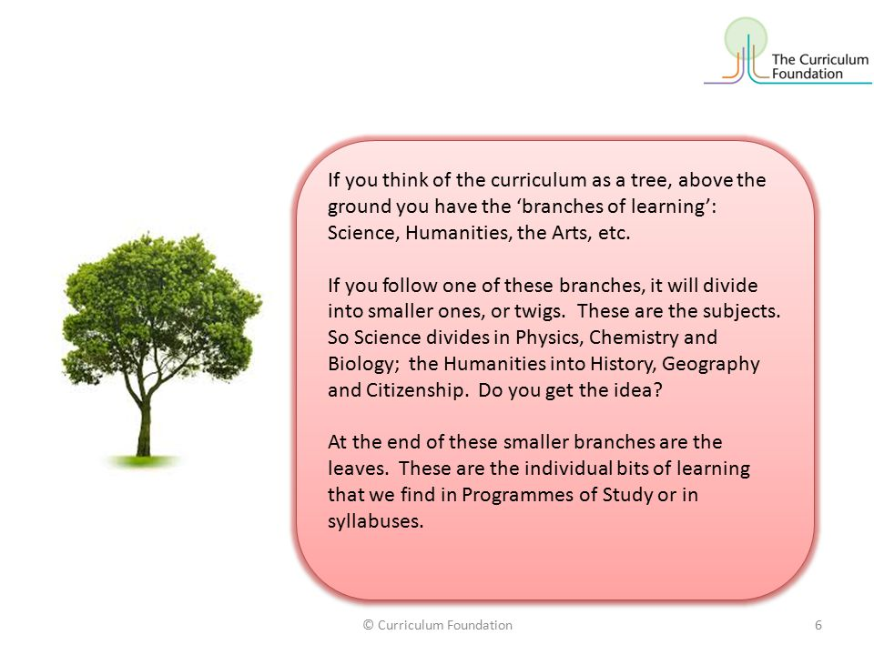 If you think of the curriculum as a tree, above the ground you have the 'branches of learning': Science, Humanities, the Arts, etc.