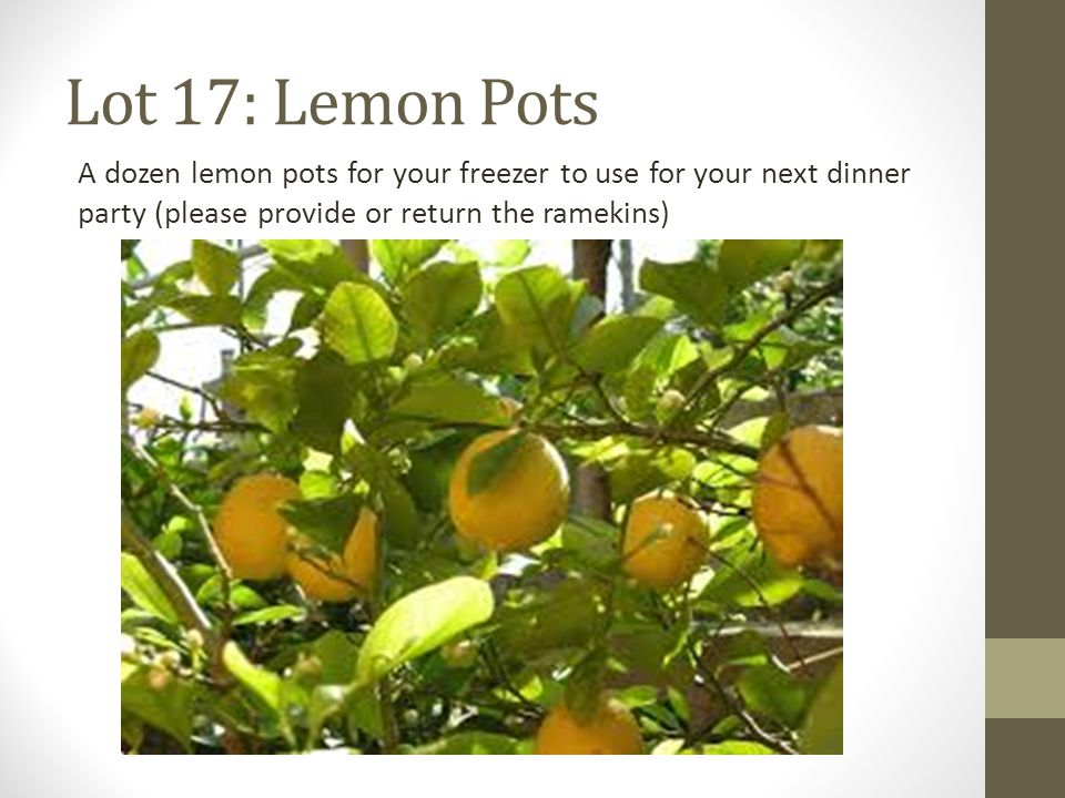 Lot 17: Lemon Pots A dozen lemon pots for your freezer to use for your next dinner party (please provide or return the ramekins)