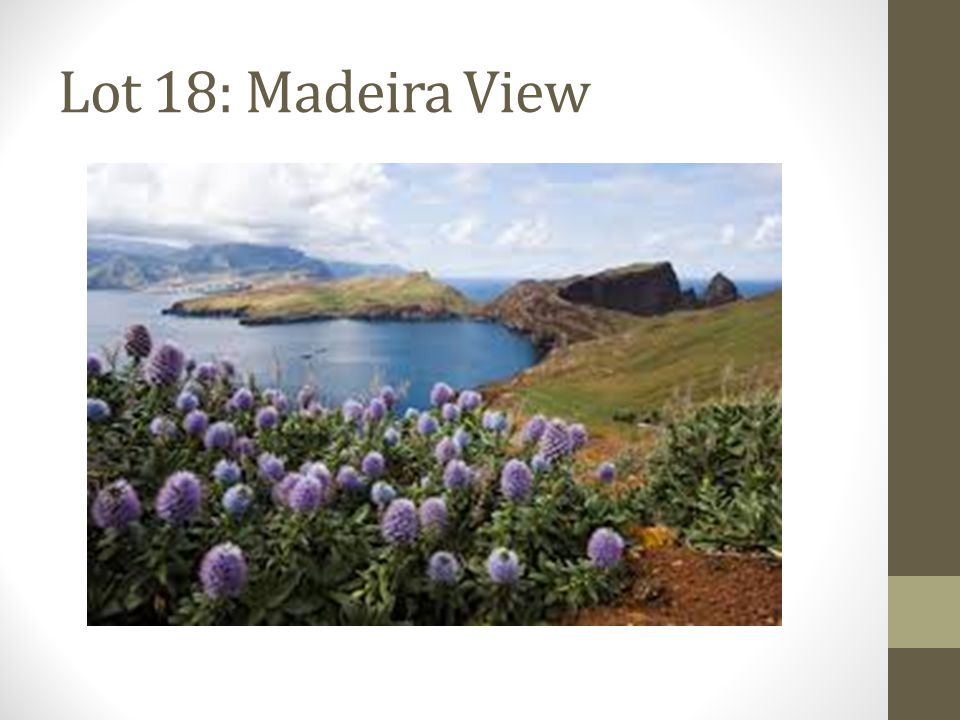 Lot 18: Madeira View