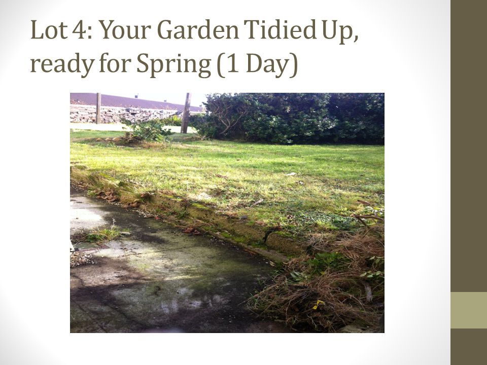 Lot 4: Your Garden Tidied Up, ready for Spring (1 Day)