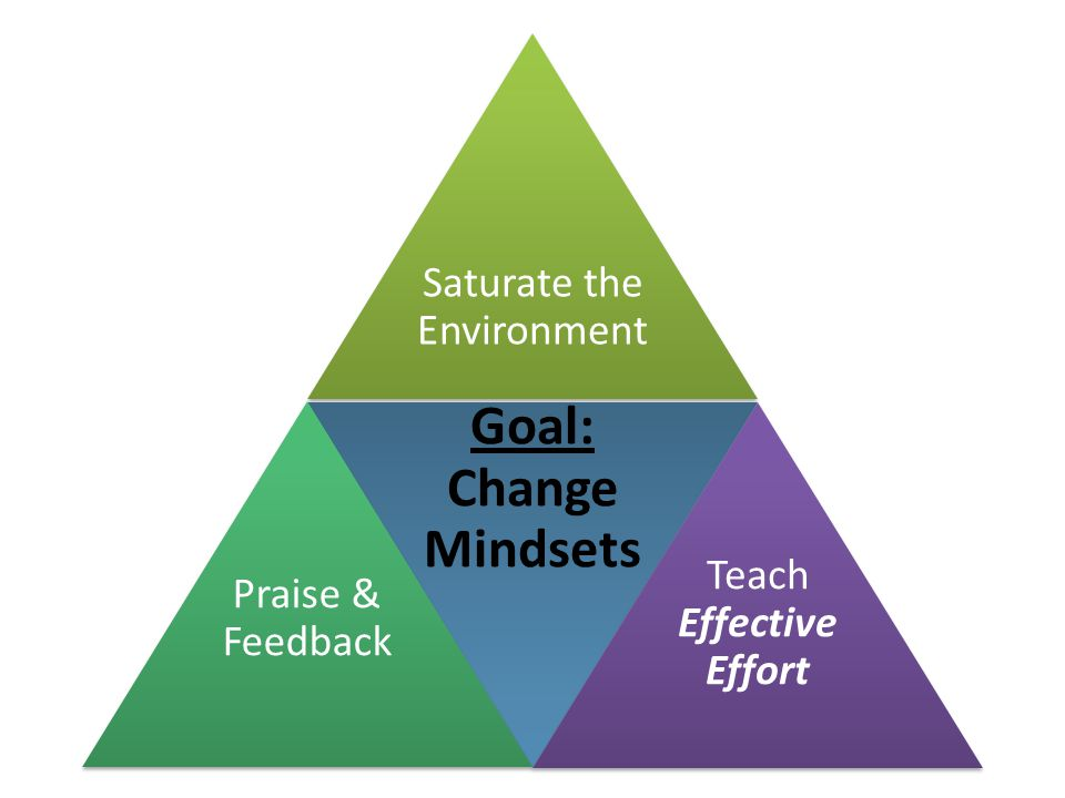 Saturate the Environment Goal: Change Mindsets Teach Effective Effort Praise & Feedback