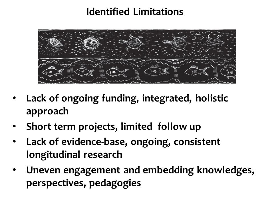 Identified Limitations Lack of ongoing funding, integrated, holistic approach Short term projects, limited follow up Lack of evidence-base, ongoing, c
